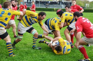VII Rugby
